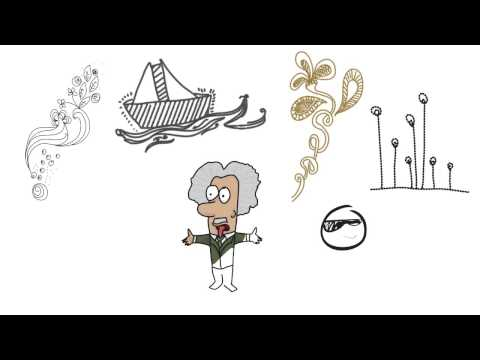 My first experience with VideoScribe program