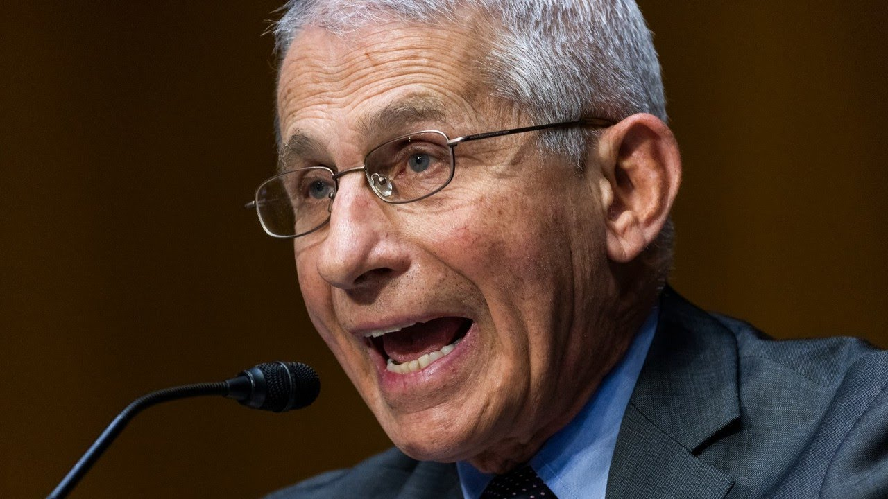 It's fascinating to see 'the reality of that fraud Fauci': Murray