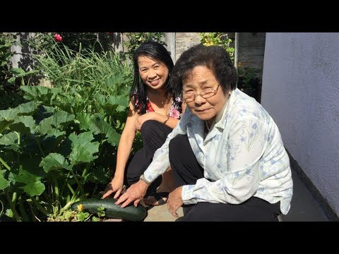 Asian Vegetable Herb Garden Tour-Cooking What You Grow-Vietnamese Food Recipes