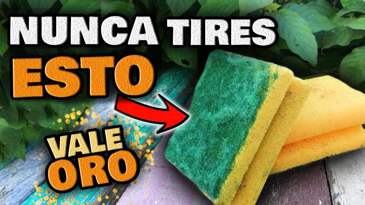 NUNCA MÁS LAS TIRES!! Esponjas usadas VALEN ORO PURO en tus PLANTAS en CASA | Huerto Urbano y Jardín