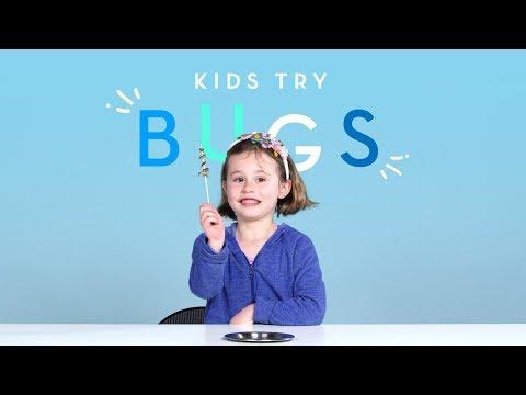 Kids Try Bugs | Kids Try | HiHo Kids