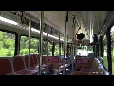 Walt Disney World Resort Bus Disney's Saratoga Springs to the Magic Kingdom