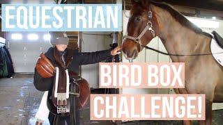 Equestrian Bird Box Challenge  Equestrian Prep
