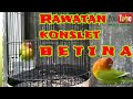 Download  #lbkonslet betina, tips rawatan harian betina konslet MP3,3GP,MP4