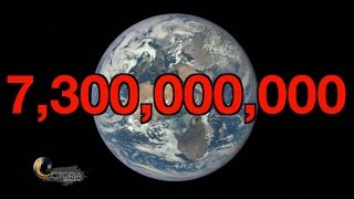 Overpopulation: Will we run out of space? BBC News