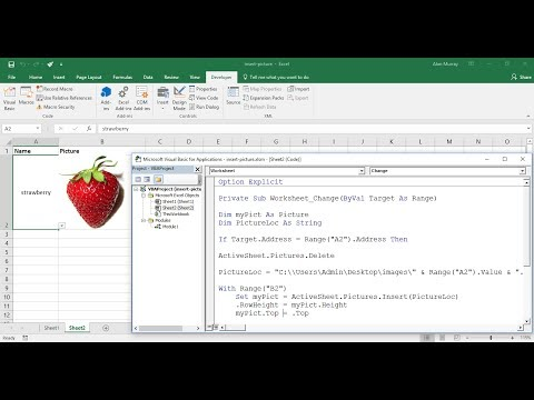 Excel VBA: Insert Picture from Directory on Cell Value Change