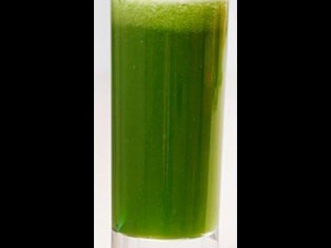 How to prepare Fresh Spinach Juice Recipe -Summer Juice,Vegetable Juice,Sexy Juice,Funny Juice