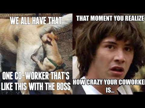 That One Coworker Meme