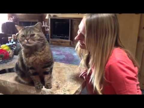 Gracie loves Josie