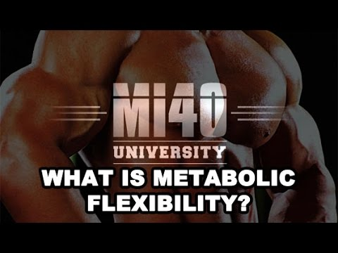 Muscle Building, Metabolic Flexibility Effect on Insulin Sensitivity