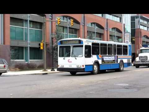 COLT Buses in Scranton, Pennsylvania, USA