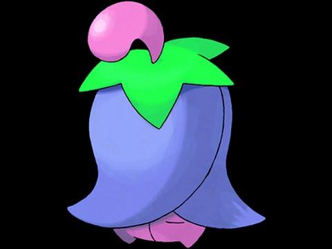 Pokemon Movesets: Cherrim