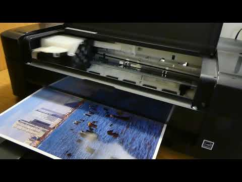 Epson L310 photo print test (4k)