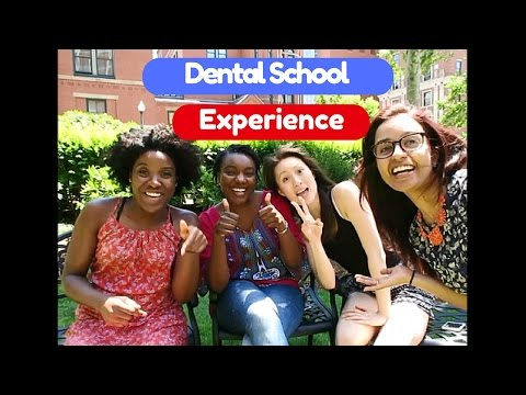 How To Get Into Dental School | The Dental Experience -Part 1