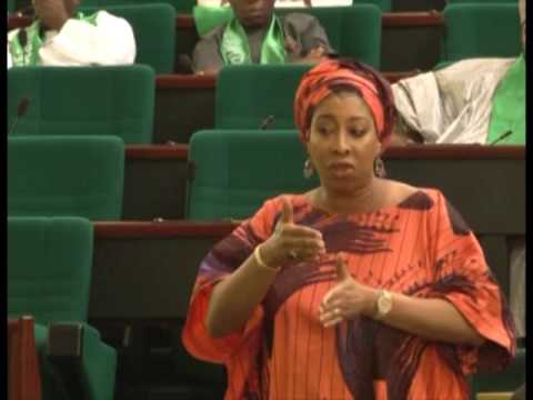 Rep. Nnenna (Abia) Contribution To Current State of Nigeria Economy
