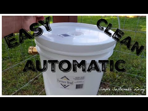 Easy, Clean, and Automatic Water for Your Chickens