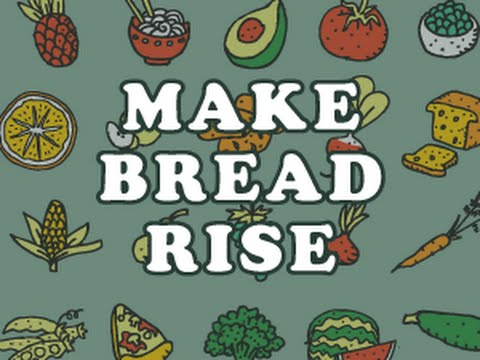 Make Bread Rise