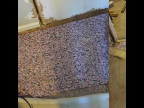 SERIOUS PIT BULL / PET DAMAGED CARPET REPAIR.