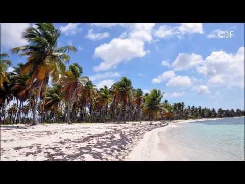 Punta Cana , Samana Island Caribbean Paradise 1080p Dominican Republic