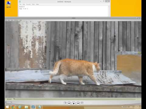 How to view videos Frame by Frame (QuickTime Player)