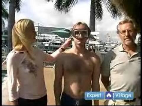 Snorkeling Techniques & Tips : Snorkeling Equipment