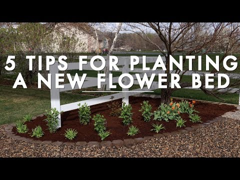 5 Tips for Planting a New Flower Bed // Garden Answer