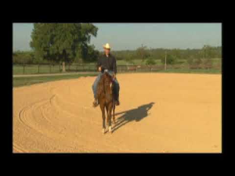 Keep your reining rundown straight - demo at the walk