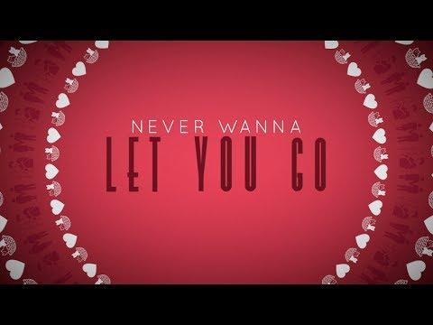 Never Wanna Let You Go - Megan Nicole (Lyric Video)