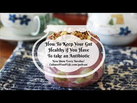 Podcast Episode 20: How To Keep Your Gut Healthy if You Have To take an Antibiotic