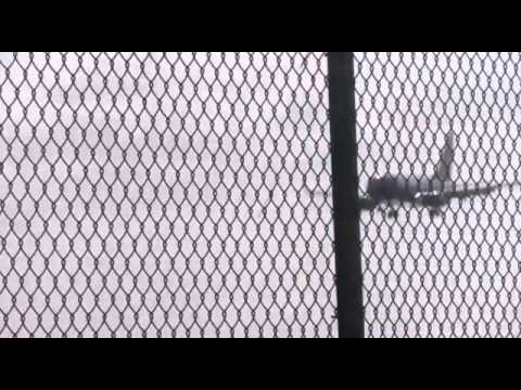 Southwest Airlines Boeing 737-700 landing and take-off @ Aruba Airport