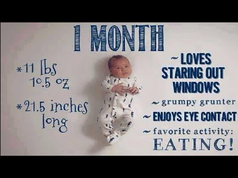 Baby Growth 1 to 12 Months | Facts Baby Growth & Development Stages