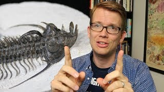 eyes made of crystal trilobites are bizarre