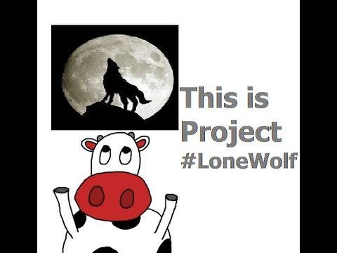 Pokemon Soul Silver Project #LoneWolf Part 49 / The Den of Questions