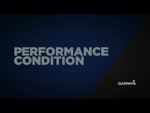 Analyzing Your Performance Condition