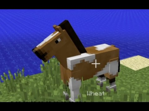 PS4 Minecraft: Finding Horses (Lead, Saddle, Riding Pigs)