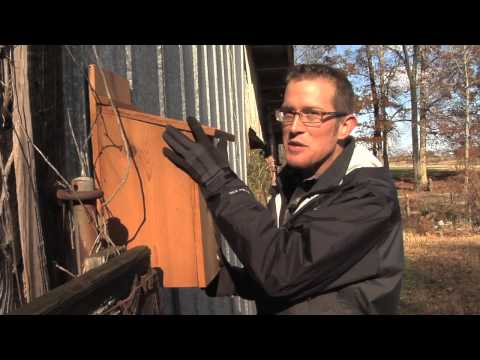 Ranger Nick: Owls And Owl Boxes Can Benefit Farmers