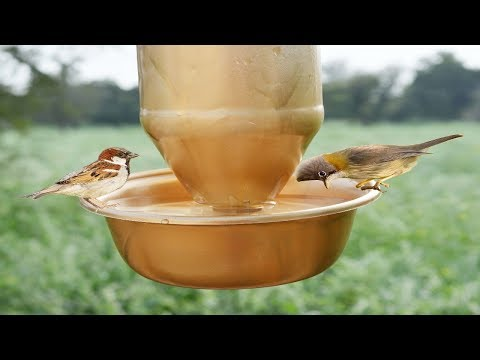 How To Make A Bird Water Feeder | Hummingbird feeder | Homemade Plastic Bottle Best Technic Feeder