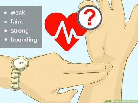 Healthy heart rate | Top 5 How to check your pulse | Resting heart rate - Health
