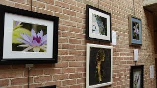 Courage Kenny Art Showcase Offers Power of Healing