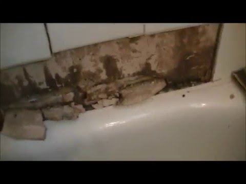 Bathtub Tile Falls Off Wall