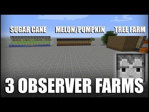 3 Observer Block Farms in Minecraft
