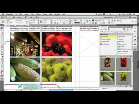 What are Top New Features in CS5 — Adobe Creative Suite 5?