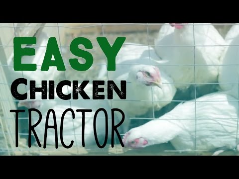 How To Build a Chicken Tractor - PT 1