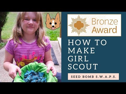 Save the Bees with Seed Bomb S.W.A.P.S. - Bronze Award Project