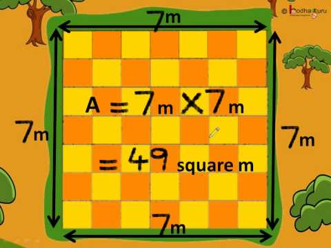 Maths - Area of a Square - Hindi