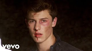Shawn Mendes - Stitches (Official Video)