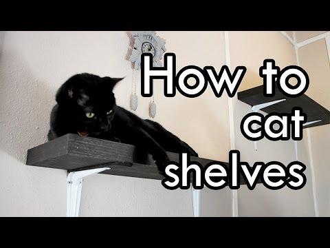 How to Make Cat Shelves : DIY