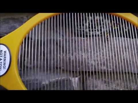 Destroying a Hornets nest with an Electric Fly Swatter!