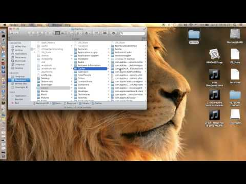 How to find Hidden files on a Mac
