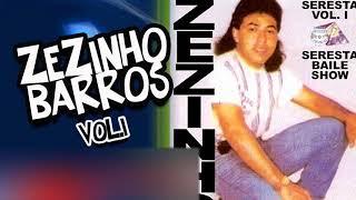 ZEZINHO BARROS VOL 1 - FILHO DO DONO
